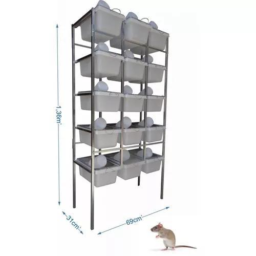 Conjunto 15 biotério ratos camundongos mercol hamster n° 1