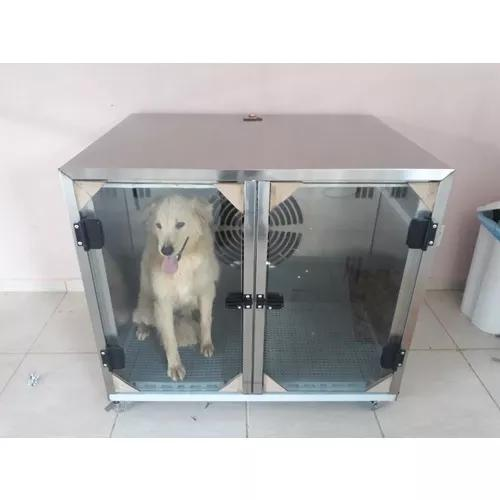Maquina de secar animais 2 lugares inox