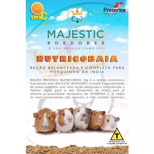 Ração + Feno + Bebedouro Para Porquinhos Da Índia