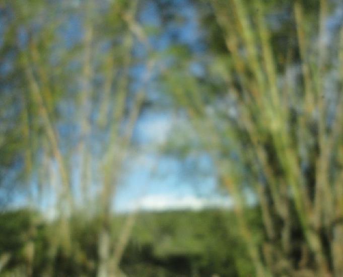 Fazenda em jaguaripe