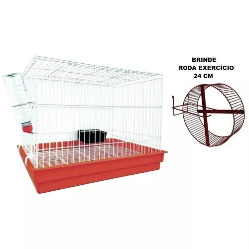 Gaiola para chinchila roedores roda de exercícios + brinde