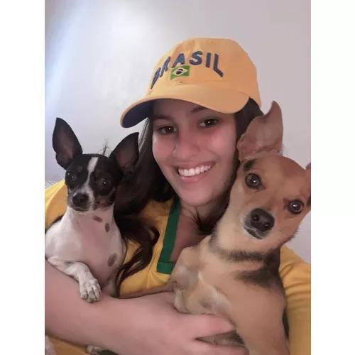 Babá de cachorros / pet sitter
