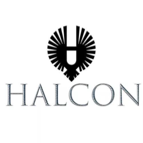 Halcon design grafico / cartões e panfletos