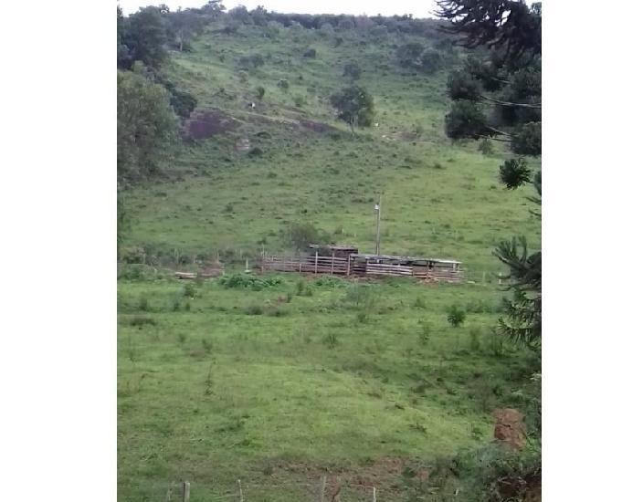 Vendo um belo sitio de 13 hectares em aiuruoca mg