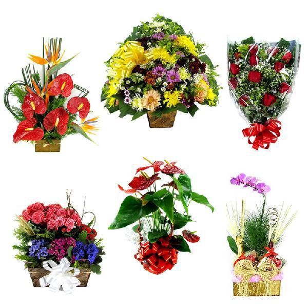 Santa maria de itabira mg floricultura flores cesta de café