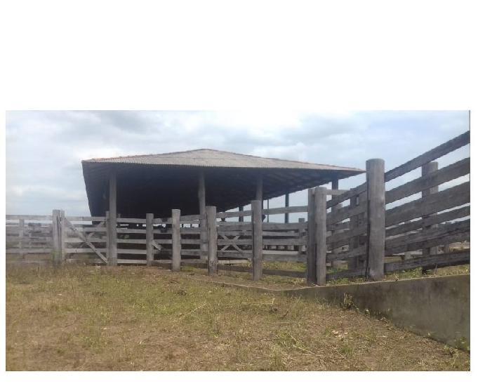 vendo fazenda com 590 alqueirão toda documentada