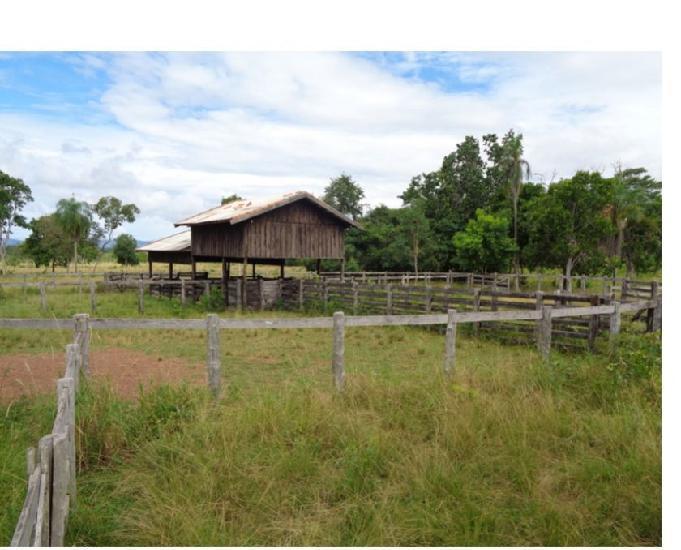 Fazenda com 1.060 hectares em porto esperidião-mt