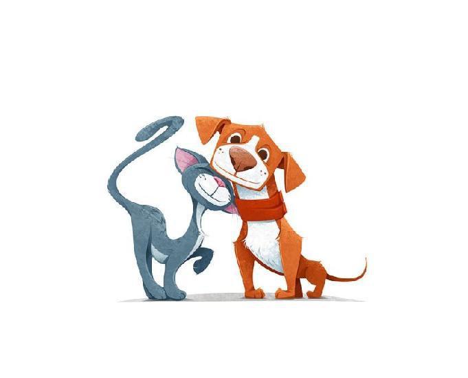 Lica e os pets - passeadores de cães e pet sitter