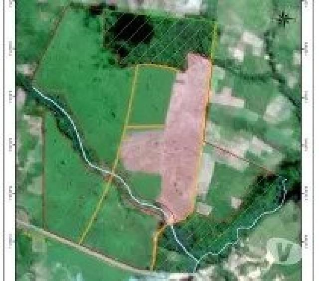 Vende-se área de fazenda no pará