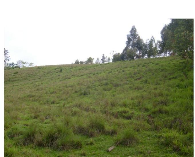 Sitio de 13 hectares em cruzília - mg