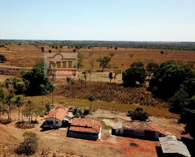 Fazenda 237 alqueires (1.147 ha)- mozarlândia-go