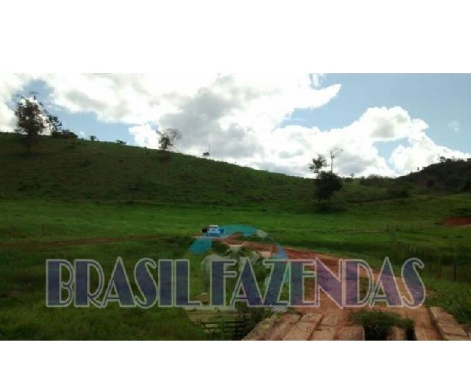 Fazenda em minas gerais. 186 hectares