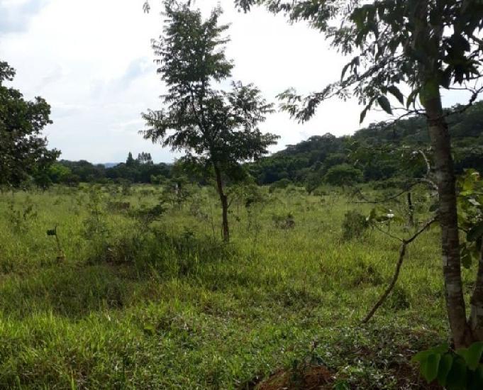 Vende 10 hectares terra