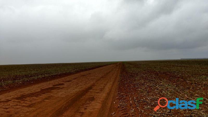 Fazenda com 5.000 hectares, para investidor adquirir num raio e 150 km