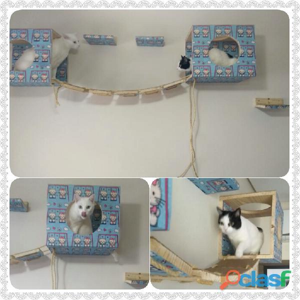 Circuito para gatos miarranha arranhadores arranhador