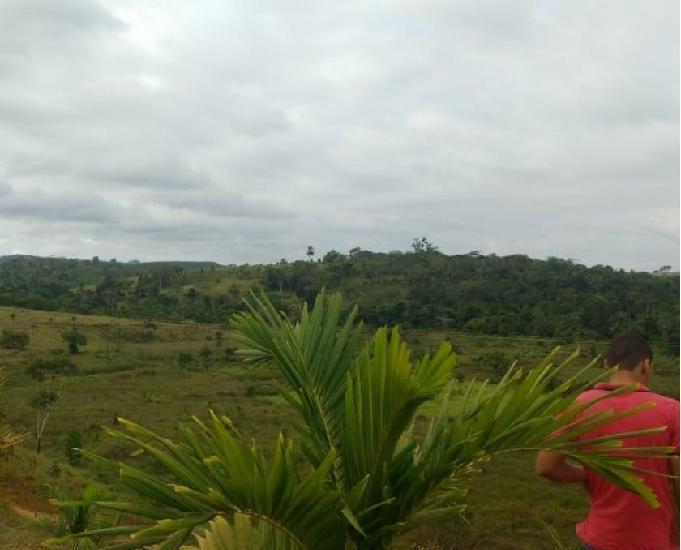 Fazenda completa com 303 hectares