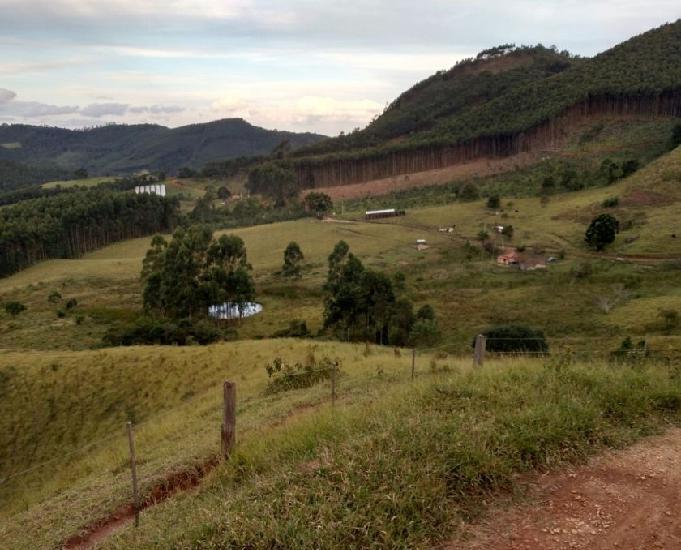 Sitio de 19 alqueires em joanópolis sp