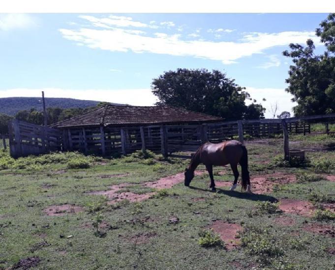 Fazenda 507 alqueires (2.543 hectares)- talismã-to