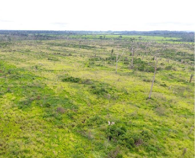 Fazenda 4.840 hectares escriturada #51