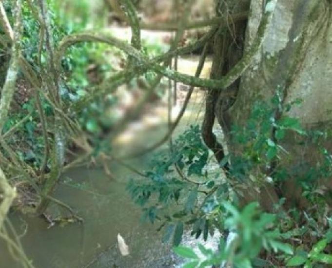 Chácara com rio a 90km de goiânia