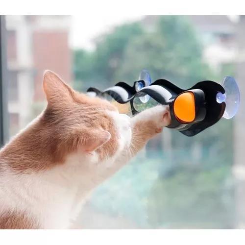 Brinquedo para gatos cat pet interativo com bolinhas ventosa