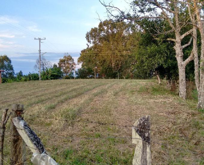Sítio 3,0 hectares - lomba grande - novo hamburgo - rs