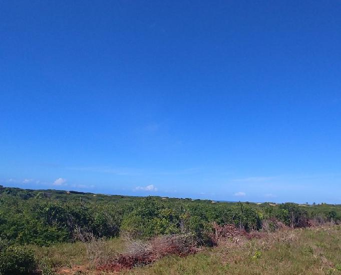 Praia entre pipa e sibauma