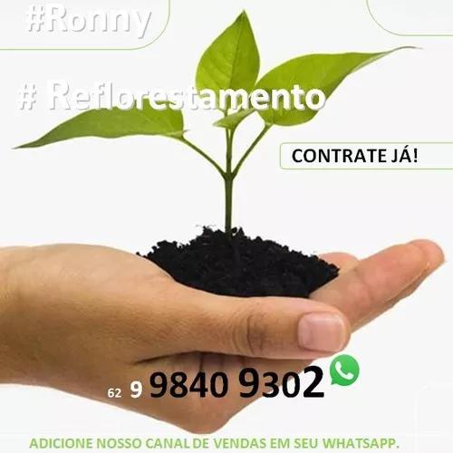 Plantio, jardinag