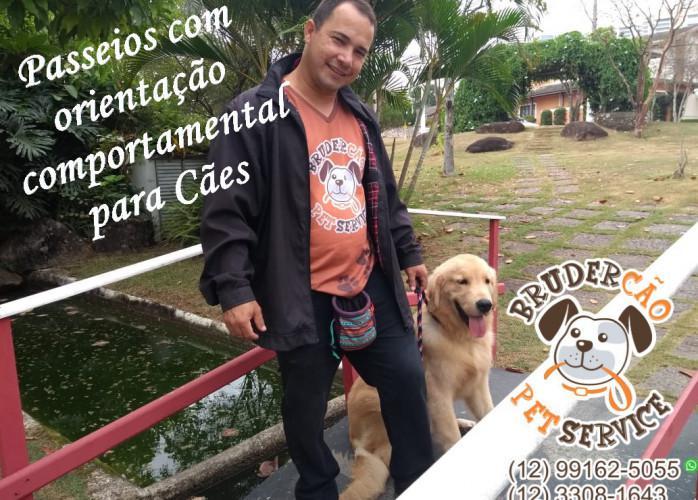 Dog walker - passeio educacional jacareí