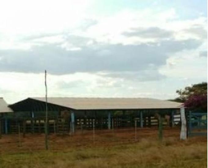 Fazenda 726 hectares dupla aptidão - muita água