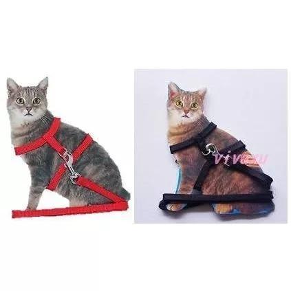 Coleira guia gato coelho cão furão frete grátis brasil