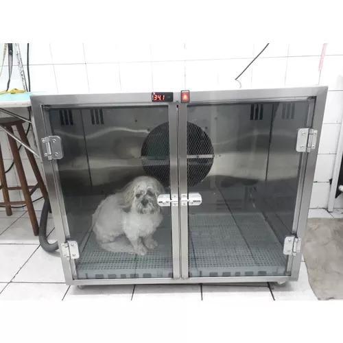 Outlet maquina de secar animais double dryer