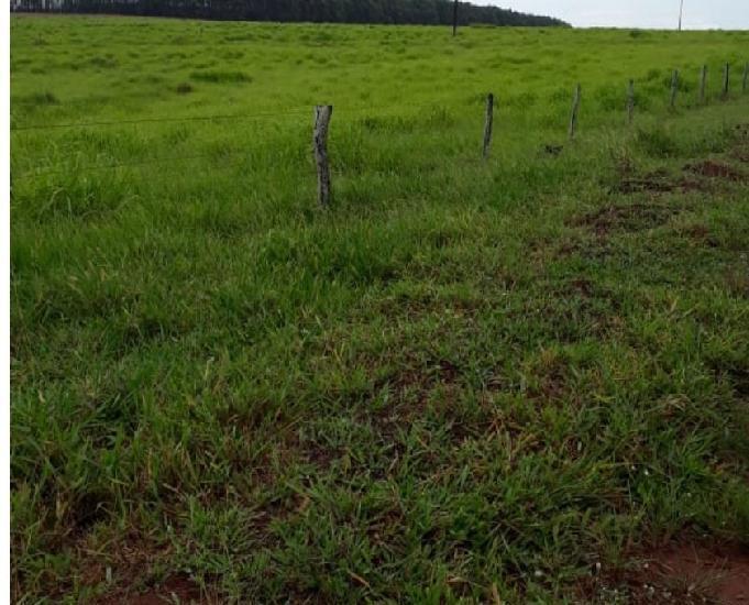 Fazenda com 116 alqueires na região de paraíso do norte pr