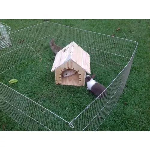Casinha para mini coelho