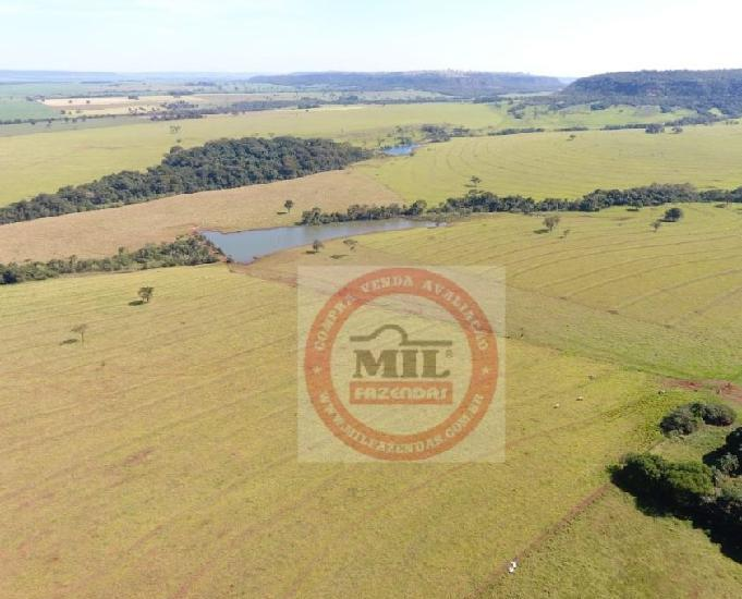 Fazenda de 106 alqueires (513.04 hectares) quirinópolis go