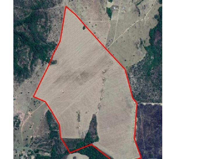 Rea para soja (15.5 alqueires) 75 hectares.ipameri-go