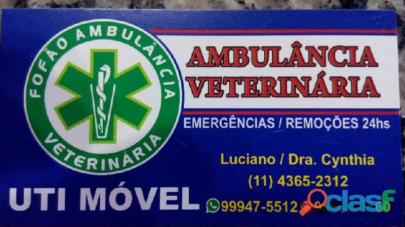 Hospital veterinario em moema fofão ambulãncia veterinária
