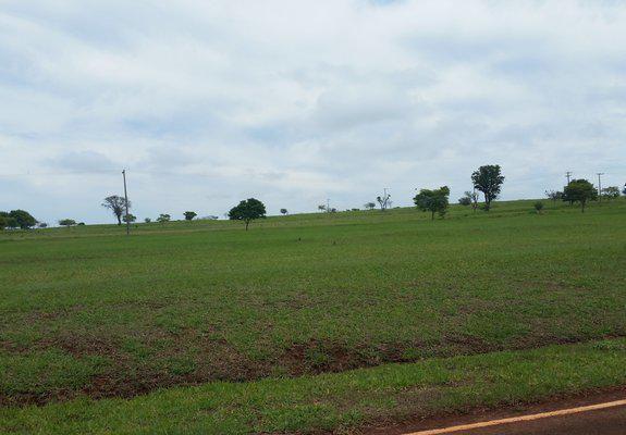Oportunidade! terreno plano de 600 m² no terras de santa