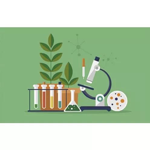 Aulas particulares de ciências (biologia e quimica)