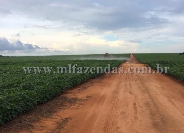 Fazenda c / 18000 hect - faz 103