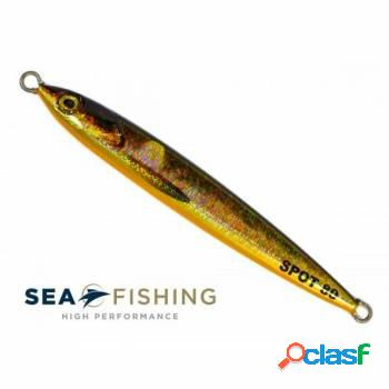 Isca jig sea fishing - spot 80 g