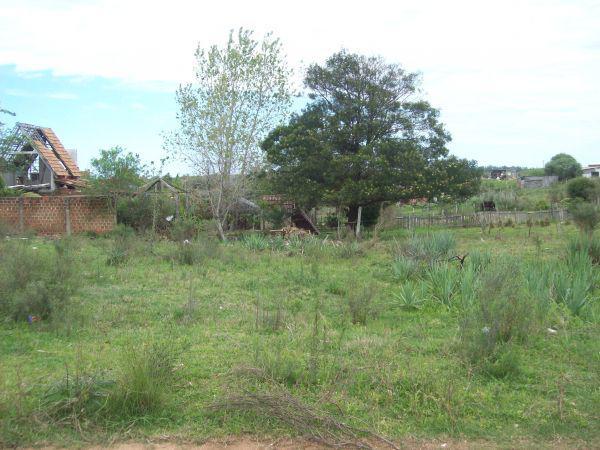 Timo terreno vila bruno a 4 quadra av. espanha.