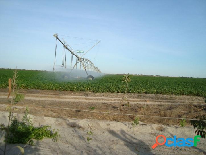 Fazenda em são romão mg - 542 hectares - 111 alqueires