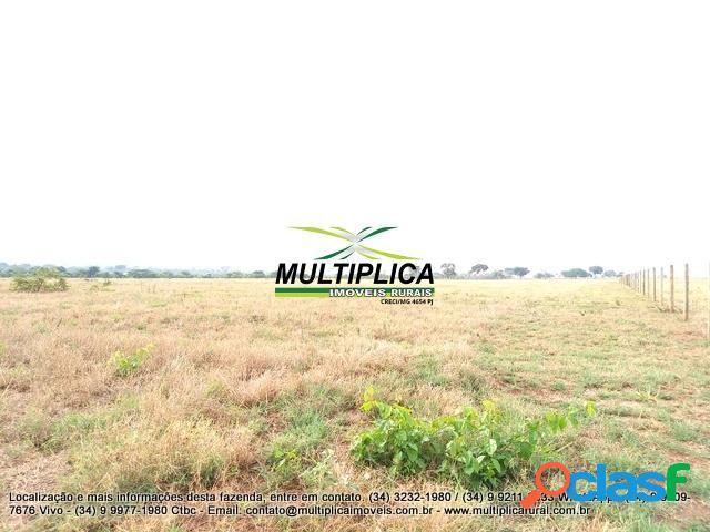Fazenda em uberlândia mg - 121 hectares - 25 alqueires