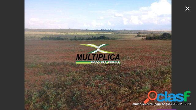 Fazenda uberlândia mg 435,6 ha 90 alq. agr. pec.