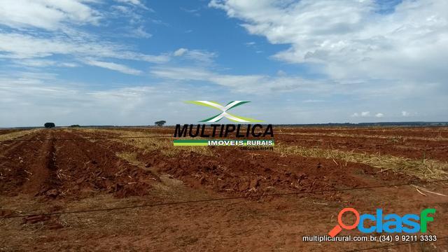 Fazenda uberlândia mg 82,28 ha 17 alq. agricultura pecuária