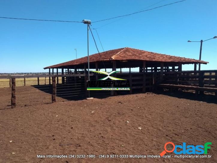 Fazenda iturama mg 1001,88 ha 207 alq pecuária montada