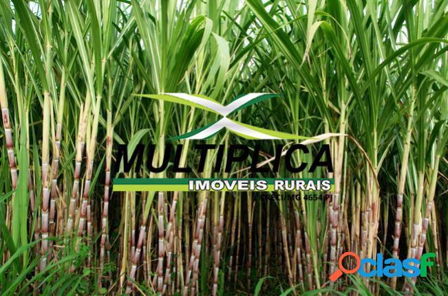 Fazenda a venda em tupaciguara mg 193,6 hectares cana soja