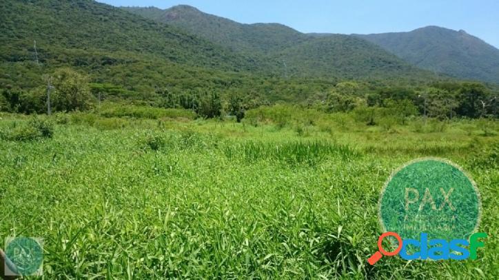 Terreno / Área de 8000 m² em Palhoça SC 3