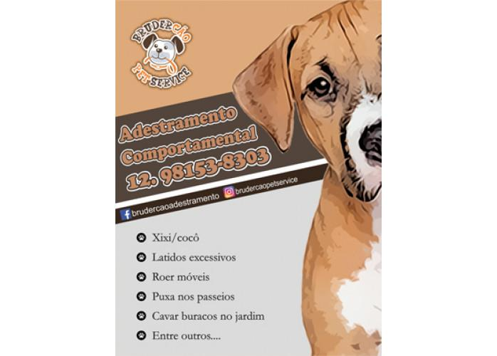Dog walker - passeio educacional